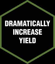 DRAMATICALLY INCREASE YIELD